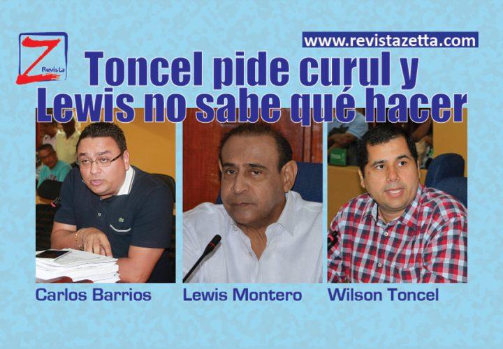 Toncel-pide