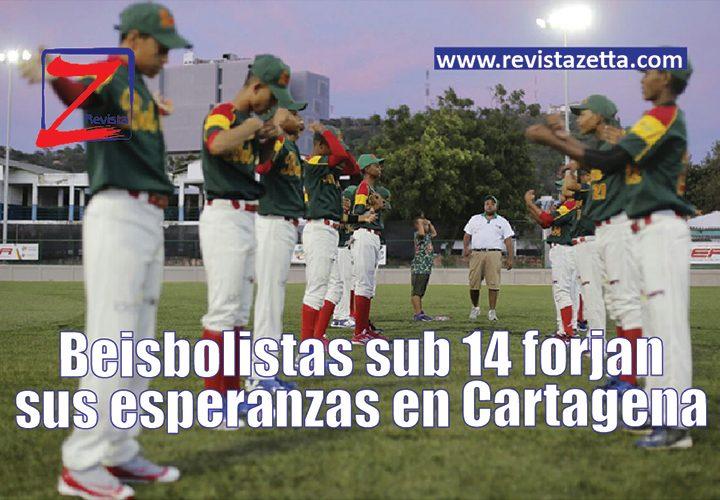 Sub-14-beisbol